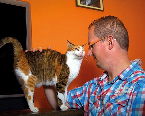 kattten gedrafstherapie