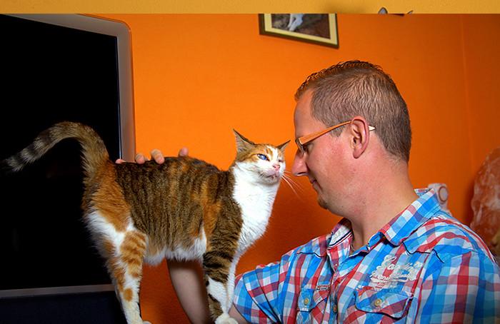vitalidad-kattengedragstherapie